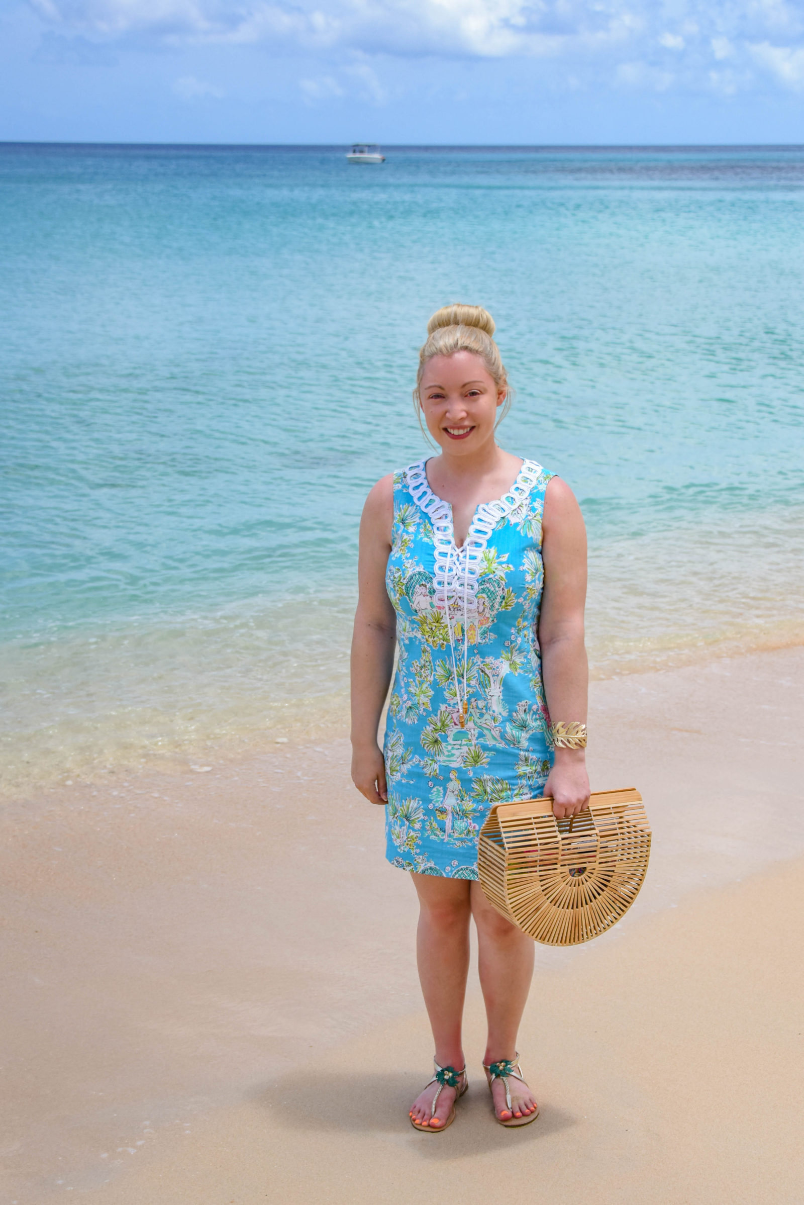 Barbados Paynes Bay Beach