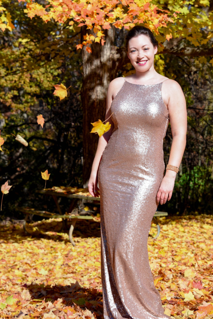 Fall Fashion Sequin Dress