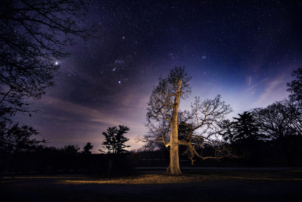 Light painting at Shaw Nature Reserve Missouri stars night sky