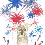Yorkie 4th of July Fireworks Watercolor