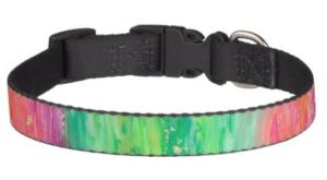 Abstract Painting Dog Collar